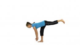 PT exercise 3
